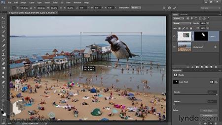 دانلود آموزش سلکت و ماسک در فتوشاپ - (Photoshop Selections and Layer Masking (2013 3