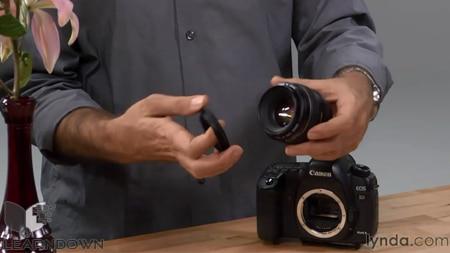 دانلود آموزش مبانی عکاسی: ماکرو و گلوزآپ - Foundations of Photography: Macro and Close-Up-2
