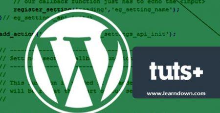 دانلود آموزش استفاده از تنظیمات API وردپرس | Using the WordPress Settings API