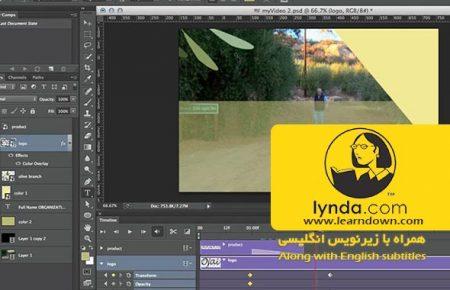 دانلود آموزش طراحی وب : ویدئو گرافیک و انیمیشن| Design the Web: Video Graphics and Animation