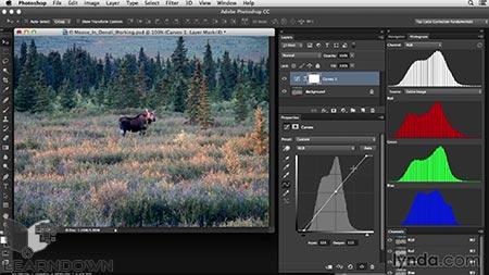 دانلود آموزش اصلاح رنگ در فتوشاپ: کنتراست کم | Photoshop Color Correction: Low Contrast