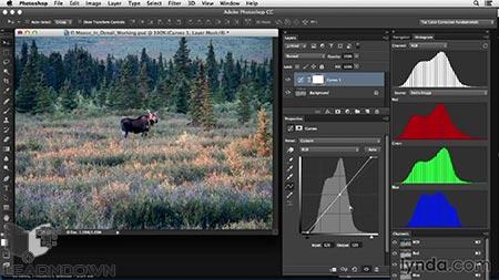 دانلود آموزش اصلاح رنگ در فتوشاپ: کنتراست کم | Photoshop Color Correction: Low Contrast 3